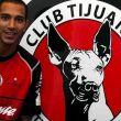 Édgar Castillo: Un 'zorro' muy 'perro'