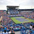 ATP Cincinnati, il tabellone maschile