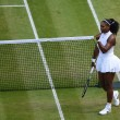 Wimbledon, S.Williams - Kerber per il titolo