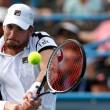 ATP Atlanta, il programma dei quarti: Isner - Fritz, Verdasco sfida Kyrgios
