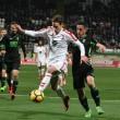 Cultural Leonesa - Granada CF: puntuaciones del Granada CF, jornada 15 de Segunda División