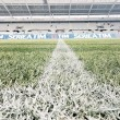 Torino - Juventus, le formazioni ufficiali: Pjanic e Dybala out