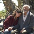 'El olivo' llega a las salas de la mano de Icíar Bollaín