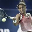 Wimbledon femminile 2016: out Errani e Schiavone, Venus Williams soffre ma passa