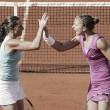 Tennis: Sara Errani e Roberta Vinci torneranno in doppio a Rio 2016