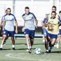Avaí e Grêmio se enfrentam em busca da primeira vitória no Brasileirão