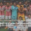 Necaxa 1-1 Tigres: puntuaciones de Necaxa en la jornada 16 de la Liga MX Clausura 2018