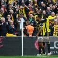 Deeney celebrates after equalising. Photo by Dan MullanGetty Images