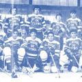 Historias de la LNHH. Capítulo II: el primer campeonato