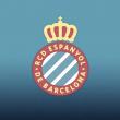 El Espanyol condena la pelea entre aficionados por motivos políticos y expulsará a los aficionados implicados