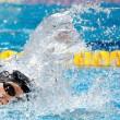Budapest 2017, Katie Ledecky guida la 4X200 s.l. americana all'oro. Sul podio anche Cina e Australia