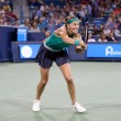 WTA Cincinnati: Petra Kvitova outlasts Serena Williams in blockbuster