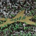 Palmeiras ouve pedidos da torcida e cria ingressos populares no Allianz Parque