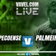 Jogo Chapecoense x Palmeiras ao vivo online hoje