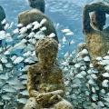 El museo del fondo del mar