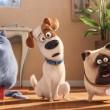 'Mascotas' consolida a Illumination Entertainment
