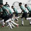 Em busca da liderança, Palmeiras recebe lanterna Avaí pelo Brasileirão