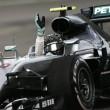 Rosberg, estadísticas de campeón
