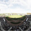 St. Paul Saints defeat Laredo Lemurs 13-11 in wild ballgame