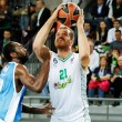 Eurolega, sesto turno: Sassari cerca la prima vittoria, spicca Pana-Lokomotiv Kuban