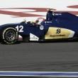 Sauber escogerá a los pilotos de 2017 por su talento y no por su dinero