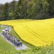 Resultado segunda etapa del Tour de Romandía 2016: Quintana, etapa y liderato