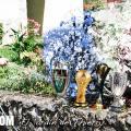 El jardín de Thierry