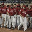 Tigres y Toros volvieron a ganar en la Copa de Béisbol