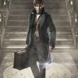 """J.K. Rowling confirma cinco filmes da franquia """"Animais Fantásticos e Onde Habitam"""""""