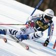 Sci Alpino - Infortunio per la Rebensburg. Dovrà star ferma sei settimane