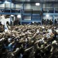 Vila Isabel e Viradouro escolhem os sambas para o Carnaval 2019