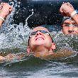 Europei Berlino 2014, nuoto di fondo: la 10 km maschile a Weertman, la 5 al femminile alla Harle