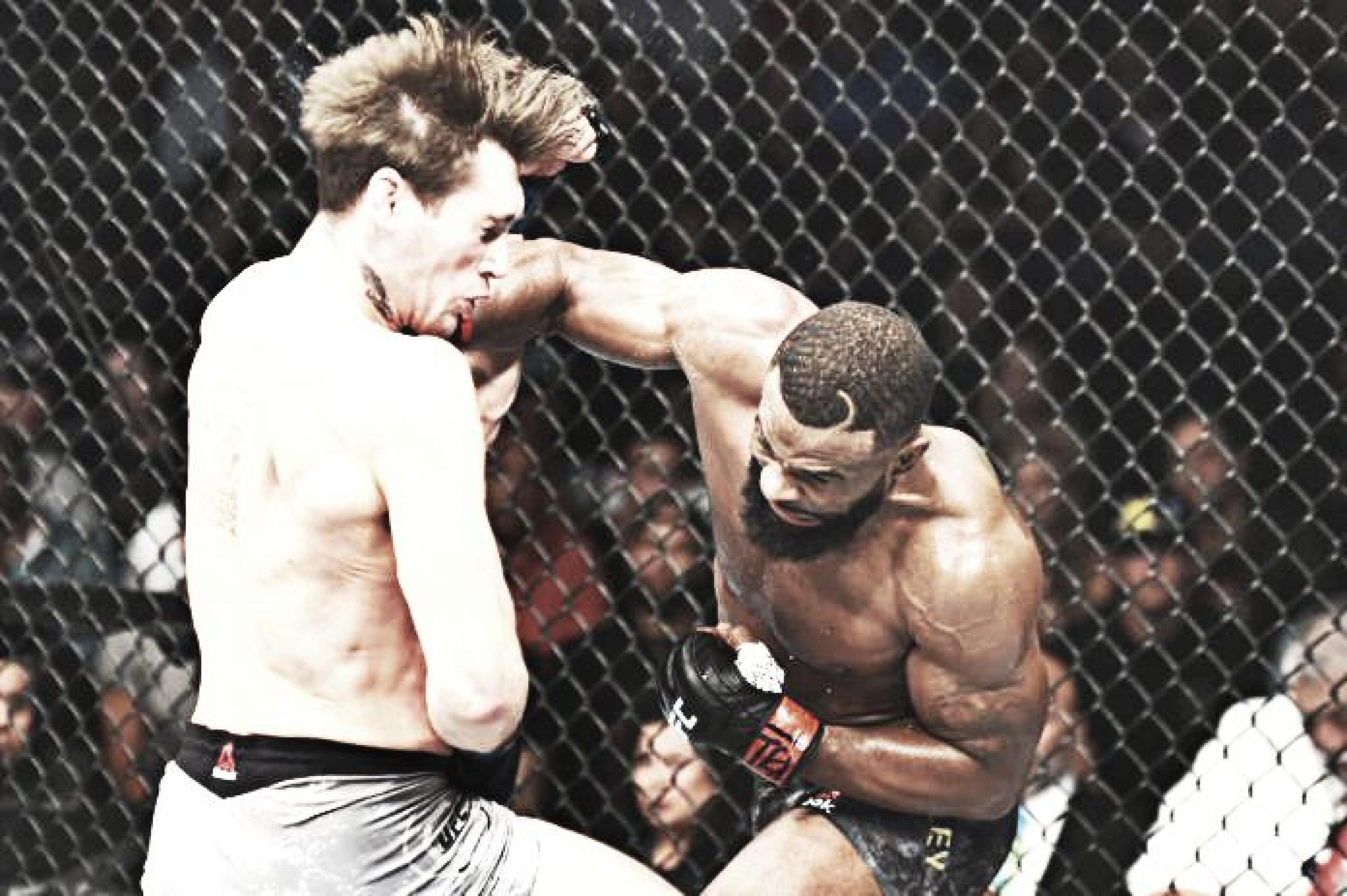 Resultado del PPV UFC 228