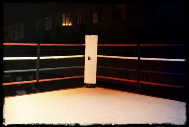 Lo mejor del boxeo nacional
