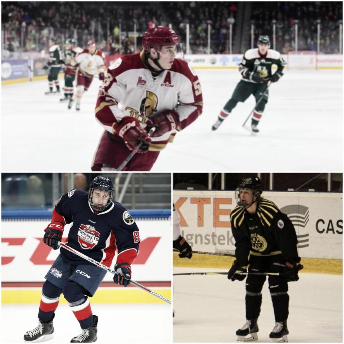 Arizona Coyotes draft options: Three good defensemen
