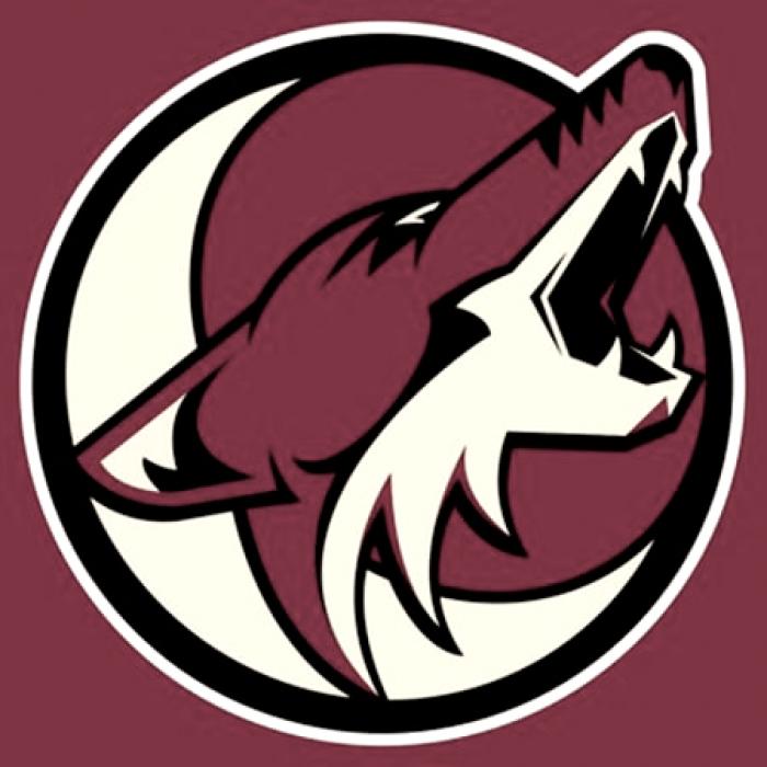 Arizona Coyotes: Playoff possibility fading
